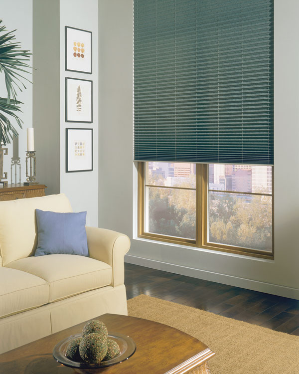 coloured living room blinds Scarborough GTA Craftsman